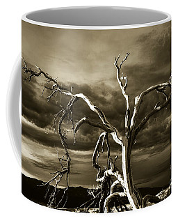 Coffee Mug featuring the photograph Dead Tree In Death Valley 10 by Micah May