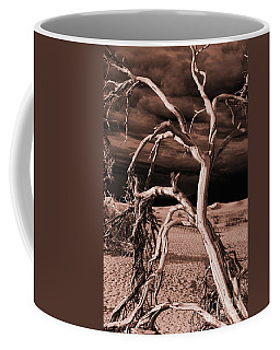 Coffee Mug featuring the photograph Dead Tree In Death Valley 15 by Micah May