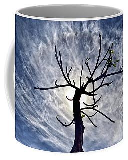 Dead Tree In St. Johns Antigua Coffee Mug