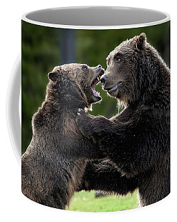 Coffee Mug featuring the photograph Death Match by Ronnie and Frances Howard