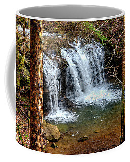 Coffee Mug featuring the photograph Debord Falls In Winter by Paul Mashburn
