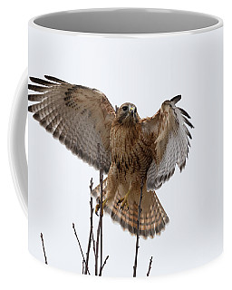 Decisive  Moment Coffee Mug