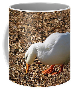 Decorative Duck Series C5717 Coffee Mug