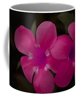 Coffee Mug featuring the photograph Decorative Floral A62917 by Mas Art Studio