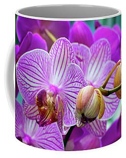 Coffee Mug featuring the photograph Decorative Fuschia Orchid Still Life by Mas Art Studio