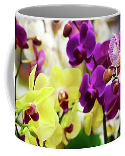 Coffee Mug featuring the photograph Decorative Orchids Still Life C82418 by Mas Art Studio
