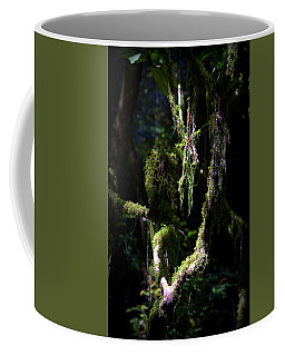 Coffee Mug featuring the photograph Deep In The Forest by Lori Seaman