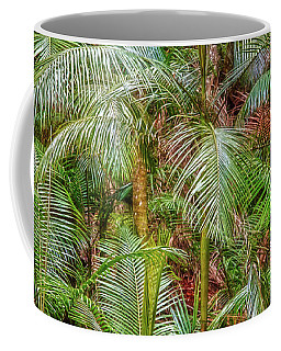Deep In The Forest, Tamborine Mountain Coffee Mug by Dave Catley