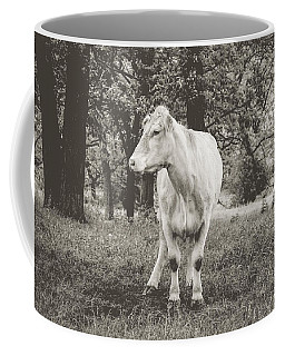 Coffee Mug featuring the photograph Deep In Thought by Viviana  Nadowski