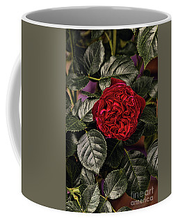 Deep Red Rose Coffee Mug