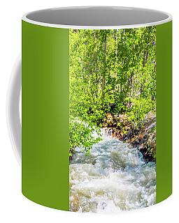 Deep Sleep Coffee Mug by Nancy Marie Ricketts