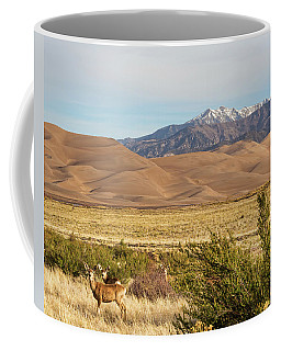 Coffee Mug featuring the photograph Deer And The Colorado Sand Dunes by James BO Insogna