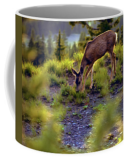 Deer At Crater Lake, Oregon Coffee Mug