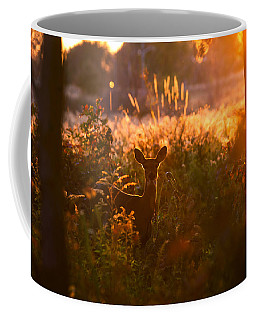 Deer At Ojibway Park Coffee Mug