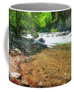 Deer Creek Trout Pool Coffee Mug
