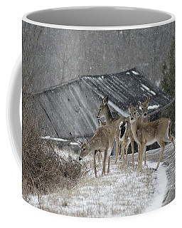 Deer Crossing Ahead Coffee Mug