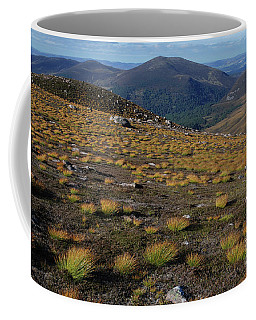 Coffee Mug featuring the photograph Deer Grass - Cairngorms by Phil Banks