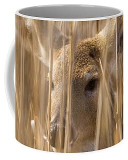 Deer Hiding In The Marsh Coffee Mug