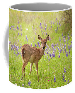 Deer In The Bluebonnets Coffee Mug