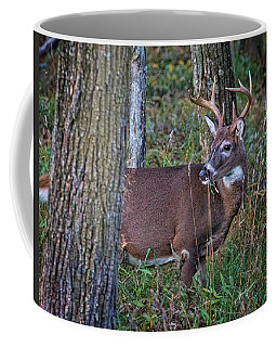 Deer In The Woods Coffee Mug