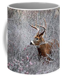 Deer On A Frosty Morning  Coffee Mug