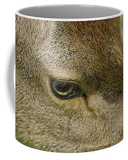 Deers Gentle Eye Coffee Mug