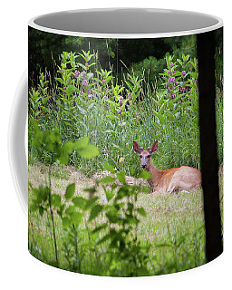 Del-1 Coffee Mug