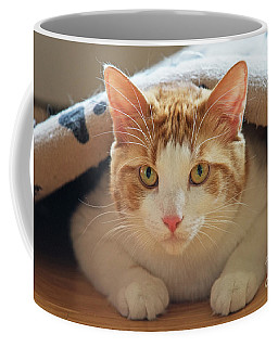 Coffee Mug featuring the photograph Delectable Companion.. by Nina Stavlund
