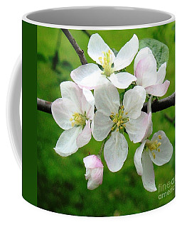 Delicate Apple Blossoms Coffee Mug