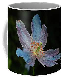 Delicate Blue Coffee Mug