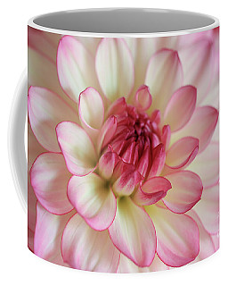 Coffee Mug featuring the photograph Delicate Dahlia by Rachel Cohen