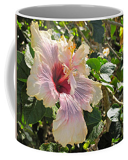 Delicate Expression Coffee Mug