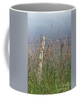 Delicate Grasses Along Fence Coffee Mug by Barbara McMahon