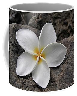 Delicate Induration Coffee Mug by DJ Florek