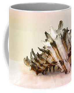 Delicate Shell Coffee Mug by Teresa Zieba