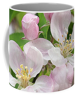 Delicate Soft Pink Apple Blossom Coffee Mug by Gill Billington
