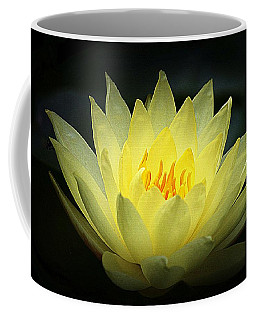 Delicate Water Lily Coffee Mug