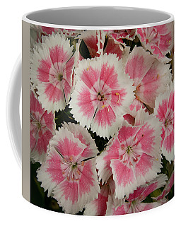 Coffee Mug featuring the photograph Delightful Dianthus by Jean Noren