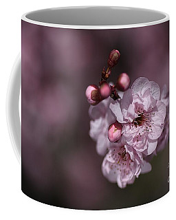 Delightful Pink Prunus Flowers Coffee Mug