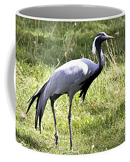 Coffee Mug featuring the photograph Demoiselle Crane by Teresa Zieba