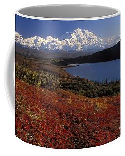 Denali Evening Coffee Mug