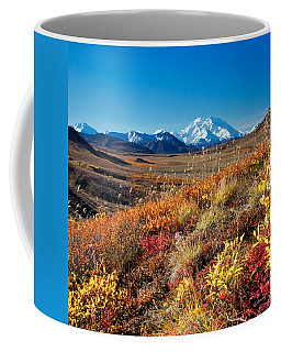Denalis Perspective Coffee Mug