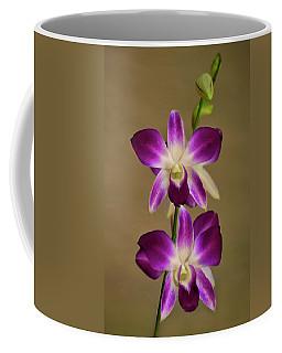 Dendrobium Orchids Coffee Mug