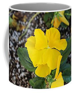 Floral Desert Beauty Coffee Mug
