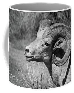 Desert Bighorn Coffee Mug