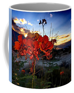 Coffee Mug featuring the photograph Desert Bird Of Paradise by Chris Tarpening