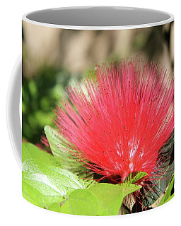 Coffee Mug featuring the photograph Desert Blossom by Kathy Bassett