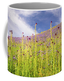 Desert Candles At Carrizo Plain Coffee Mug