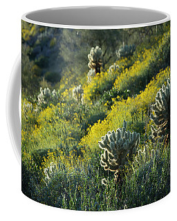 Desert Color And Light Coffee Mug by Sue Cullumber