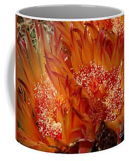 Desert Fire Coffee Mug by Kathy McClure